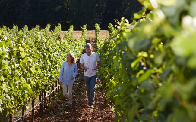 Véronique Boss-Drouhin and Philippe Drouhin in the vineyard